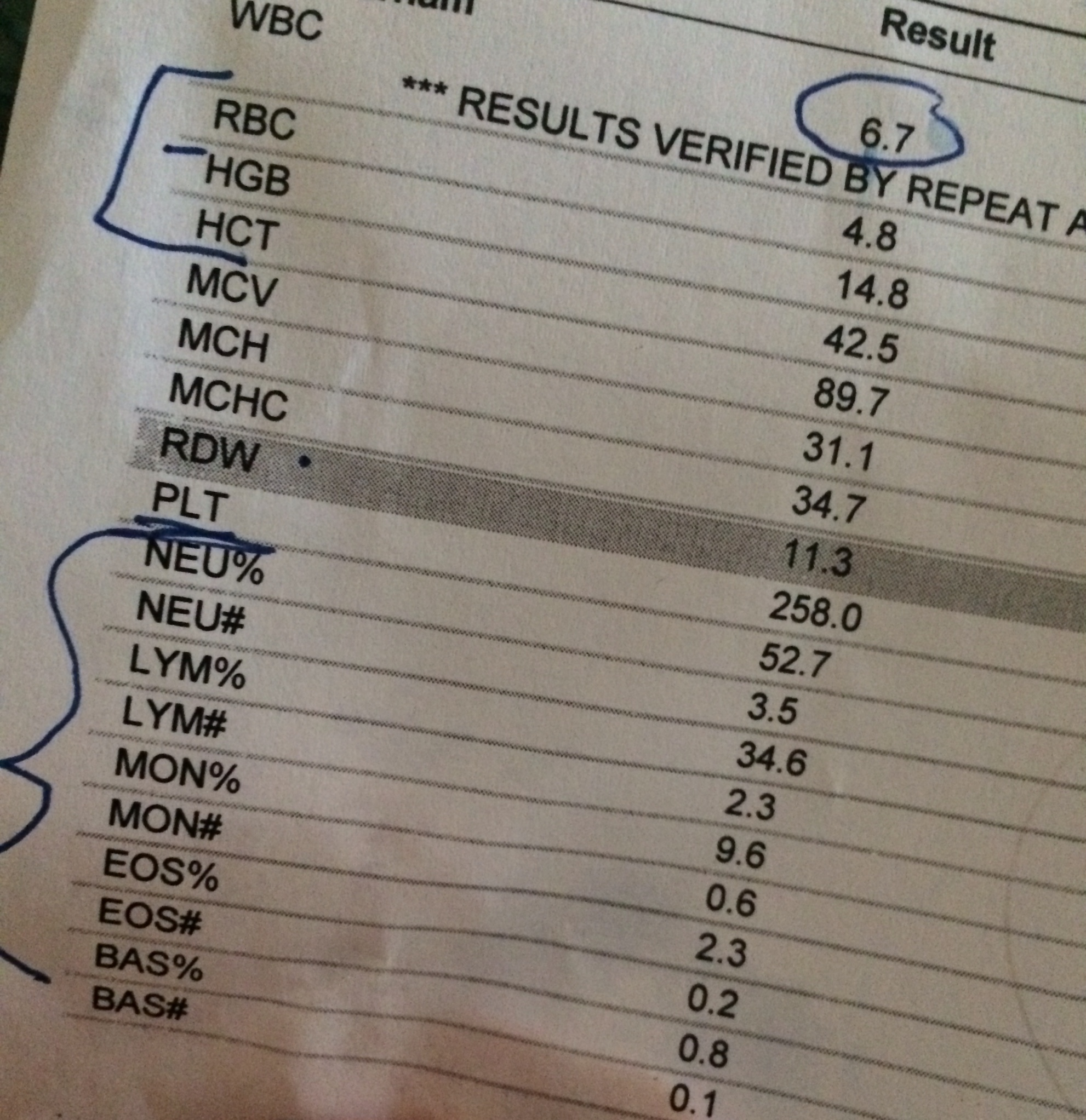My blood work results